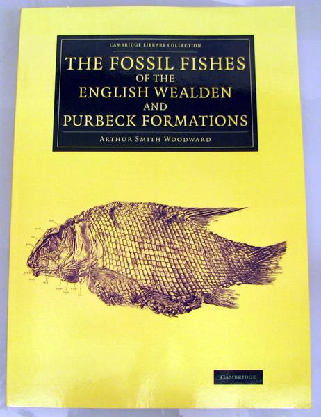 化石の本_f0292806_05504325.jpg