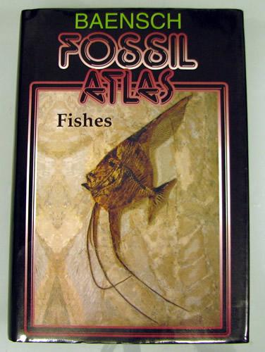 化石の本_f0292806_05504822.jpg
