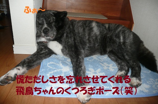 f0121712_1624738.jpg