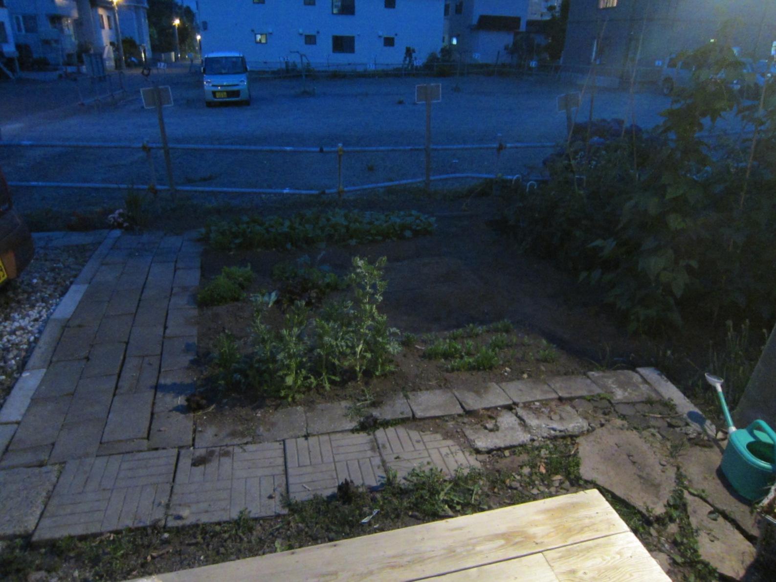 2416)「昨夜は庭で夕食をした。2014年7月17日(木)」_f0126829_16571422.jpg