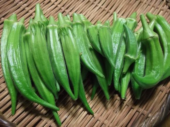 夏野菜は最盛期..._b0137932_72379.jpg