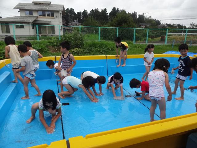 二田小学校一年生来園_d0166047_16161692.jpg