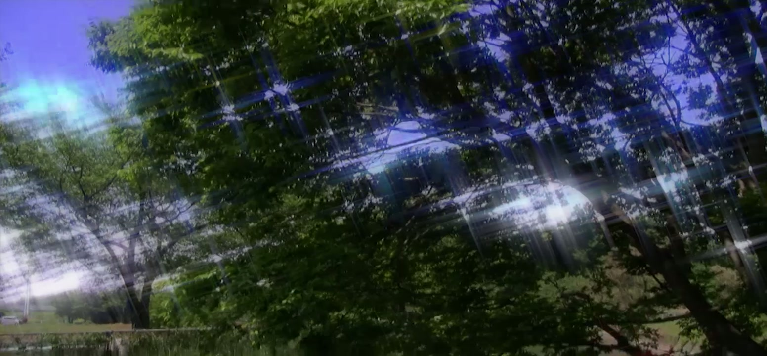 landscapeにBGAで参加しています。_b0333873_00460340.jpg