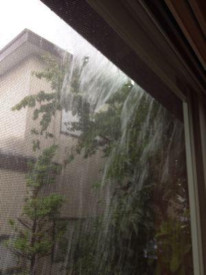 雨ヤバイ_e0148212_1252553.jpg