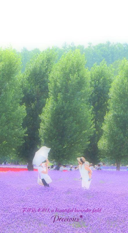 富良野、2014夏-1。_c0101341_2159222.jpg