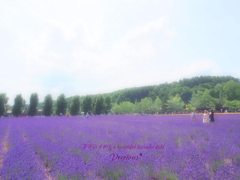 富良野、2014夏-1。_c0101341_2255218.jpg