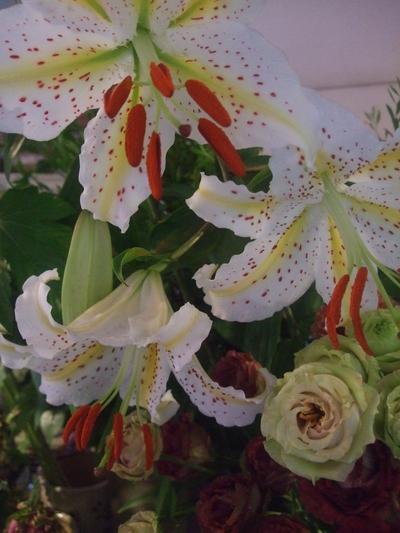 オークリーフ(季節の花束)_f0049672_181346100.jpg