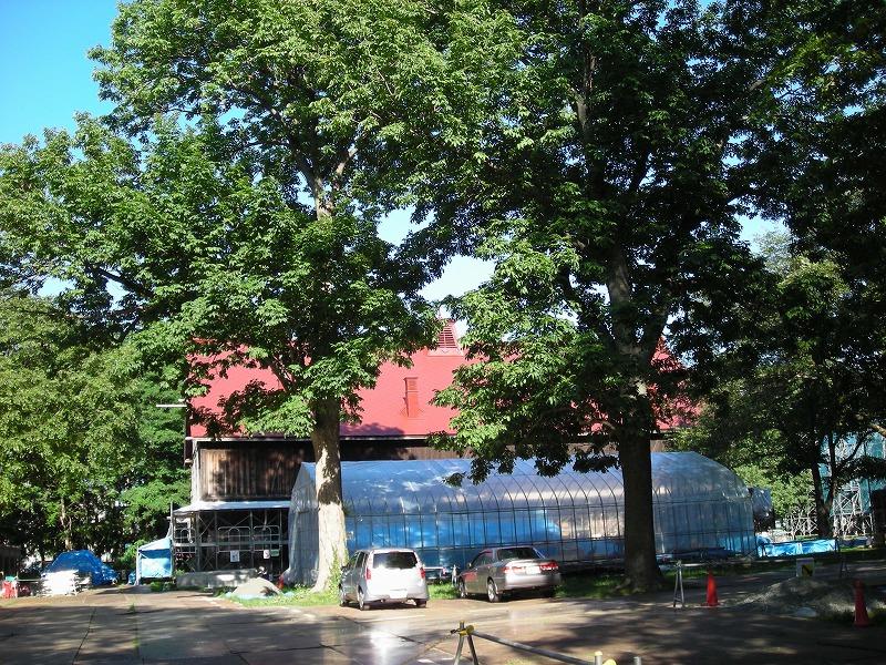 北大第二農場重要文化財建造物の改修_f0078286_10325915.jpg
