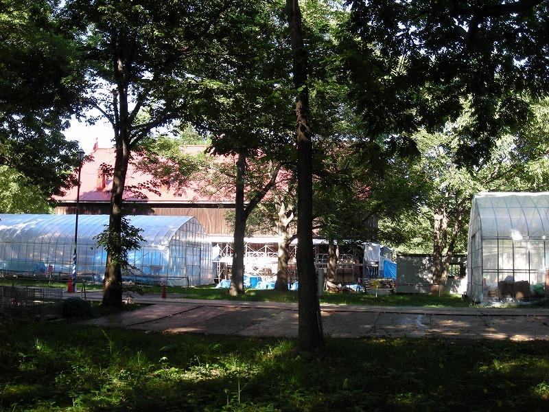 北大第二農場重要文化財建造物の改修_f0078286_10342370.jpg