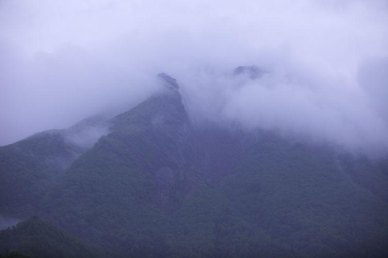 日光白根山のコマクサ撮影_d0148902_20422363.jpg