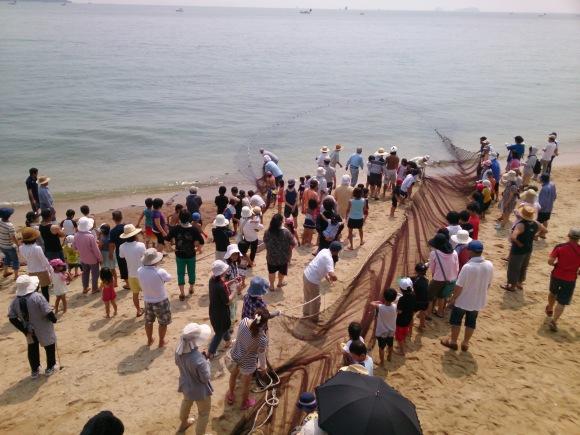 毎年恒例の大浜漁協主催 地引き網が伊豫水軍前の海岸で行われました_b0325627_16503731.jpg