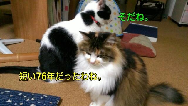 c0181639_111549.jpg