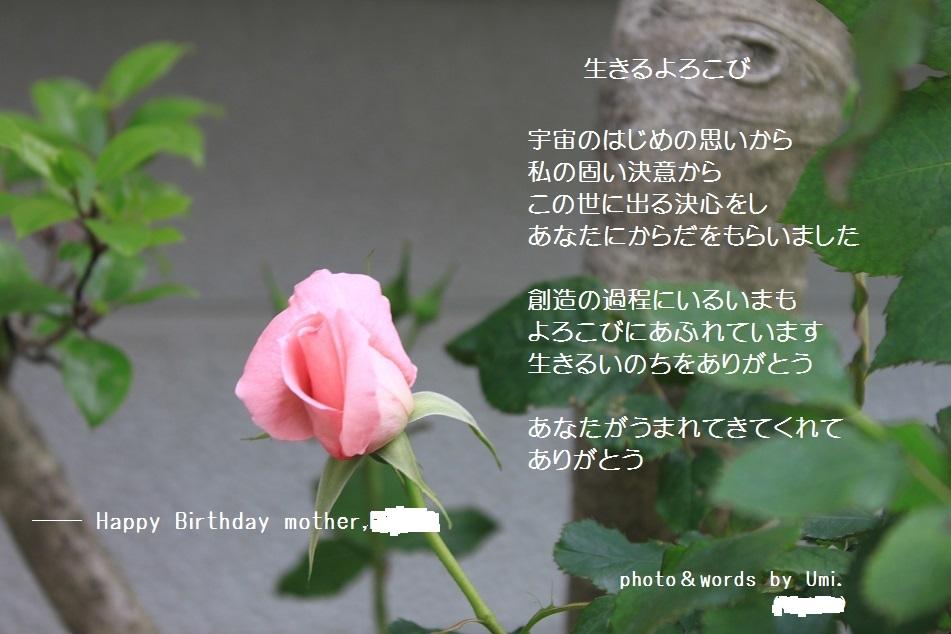 f0351844_08554452.jpg