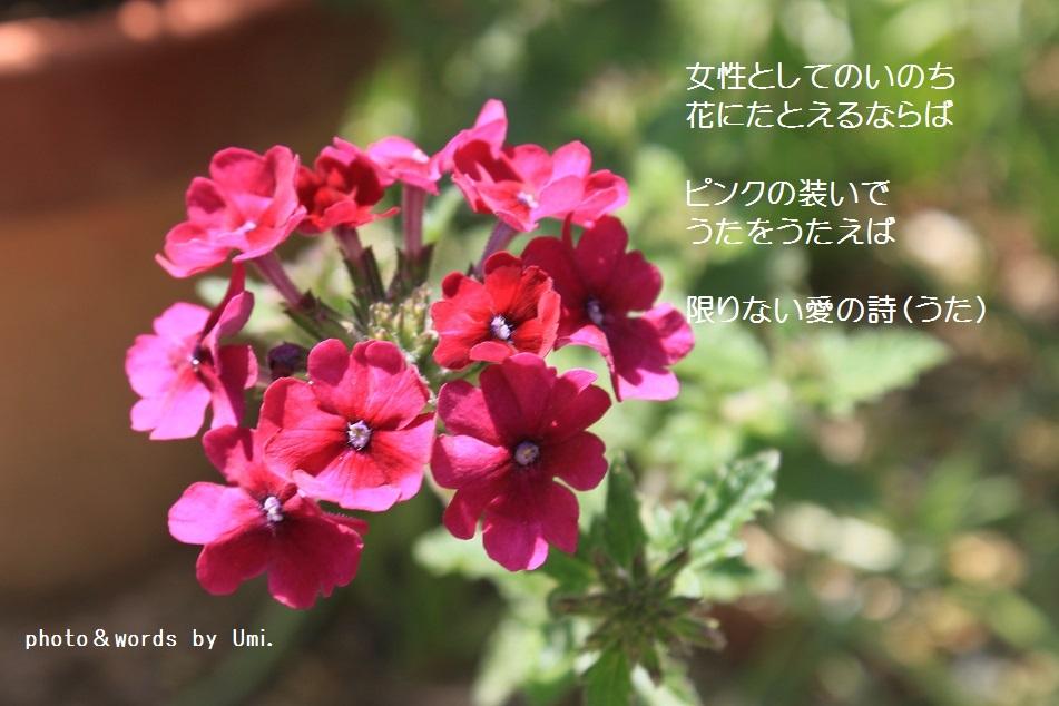 f0351844_08555570.jpg