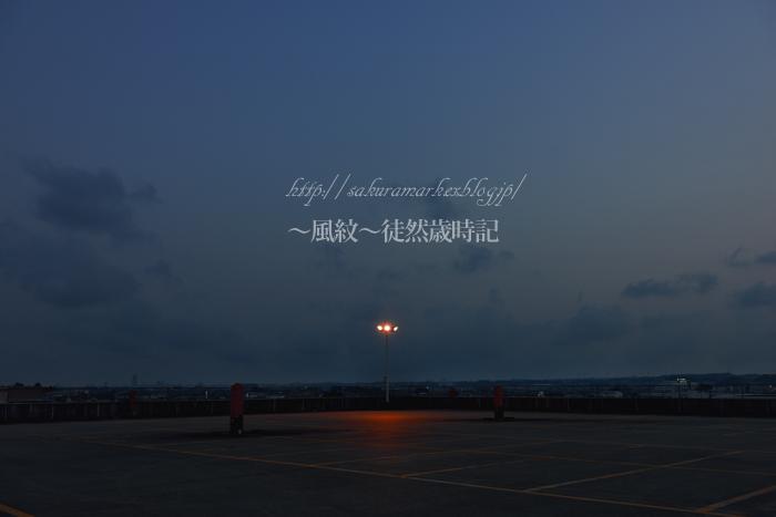 落日の中で輝く・・・。_f0235723_209441.jpg