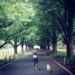 楽しい散歩♪♪♪_f0013255_13193852.jpg