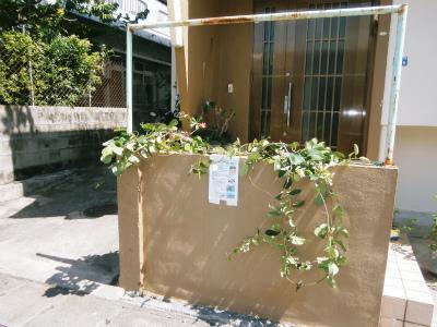 玄関前フェンスの復活_c0180460_22252211.jpg