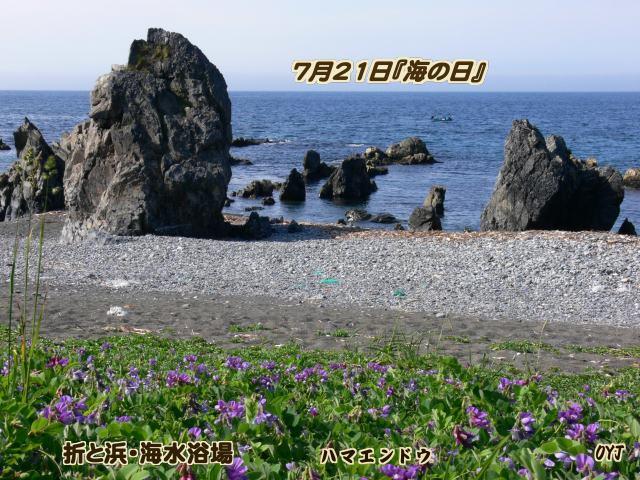 f0166871_1764476.jpg
