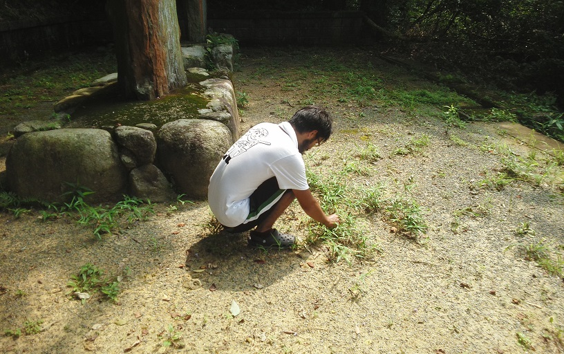平成廿六年 七月廿日 西日本遊學 五十日目_a0165993_21512819.jpg