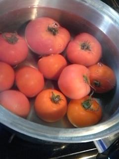 トマトの日_f0116297_15503422.jpg