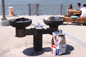 ブルックリン・ブリッジ・パーク特集(2):ピクニック半島BBQエリア_b0007805_1255444.jpg