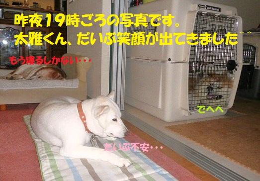 f0121712_20473575.jpg