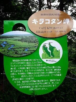 北海道旅行  2日目_f0323927_10125176.jpg