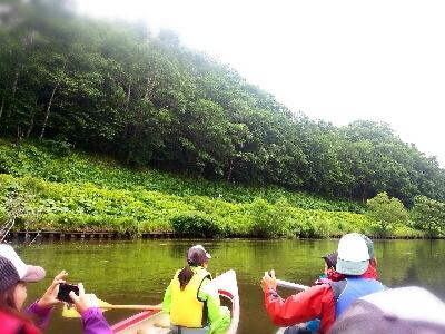 北海道旅行  2日目_f0323927_957591.jpg