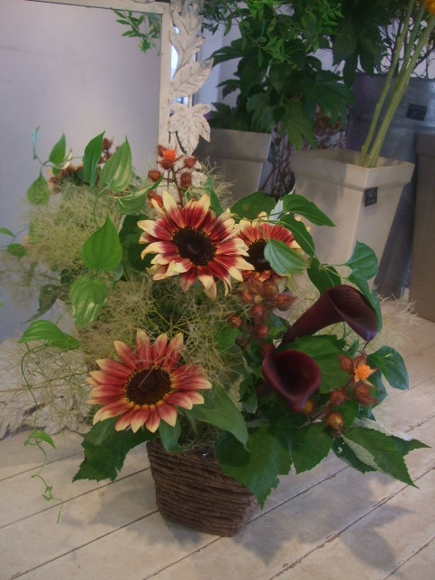 オークリーフ花の教室(甘艸さんと大草さんの作品)_f0049672_1892410.jpg