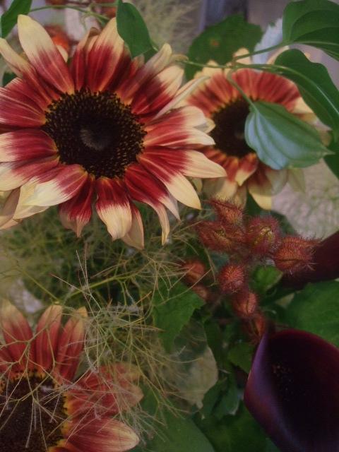 オークリーフ花の教室(甘艸さんと大草さんの作品)_f0049672_1894521.jpg