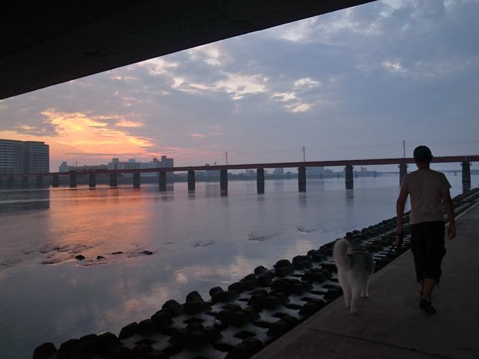 美しい朝はつづく… (*^_^*)_c0049299_2130651.jpg