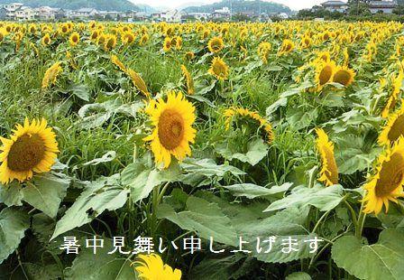 f0166704_10575324.jpg