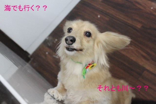 大失敗!!_b0130018_033314.jpg