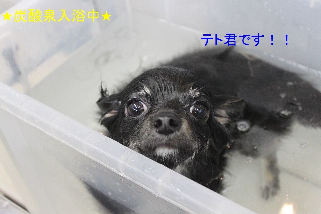 大失敗!!_b0130018_044124.jpg