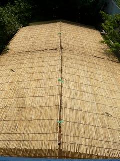 屋根によしずをはりました。_f0206733_11134011.jpg