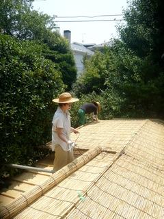 屋根によしずをはりました。_f0206733_11263321.jpg