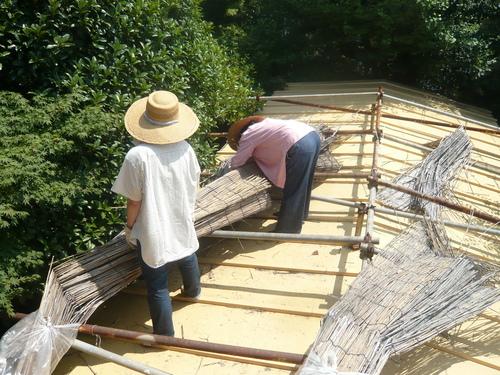 屋根によしずをはりました。_f0206733_11295011.jpg