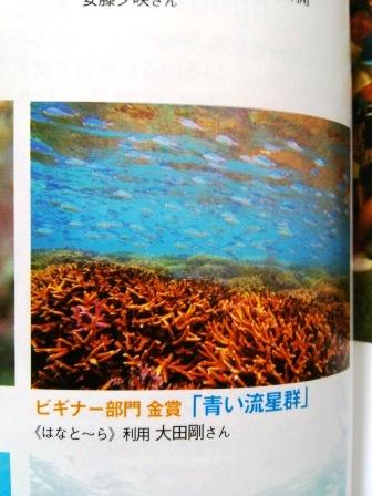 早速海へ~♪_a0189838_1757873.jpg