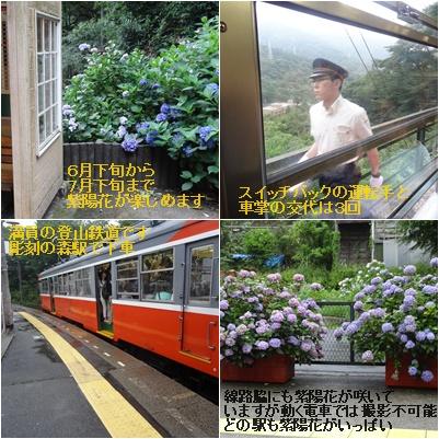 箱根の旅 一日目 彫刻の森美術館&富士屋ホテル_a0084343_1134235.jpg