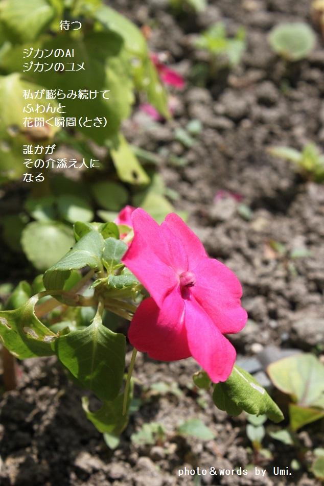 f0351844_09041061.jpg