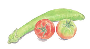 緑色の茄子とトマト_f0189164_2040339.jpg