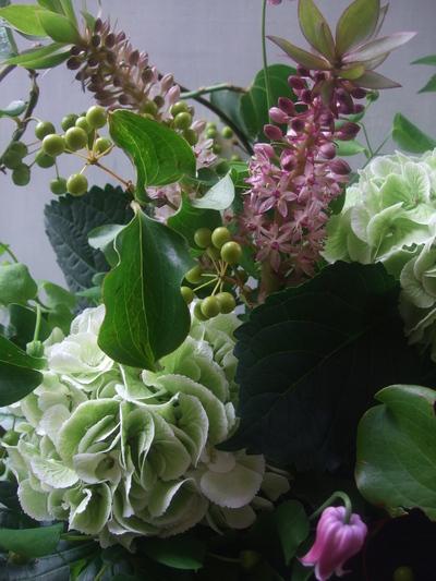 オークリーフ(青木園芸の紫陽花)_f0049672_1750556.jpg