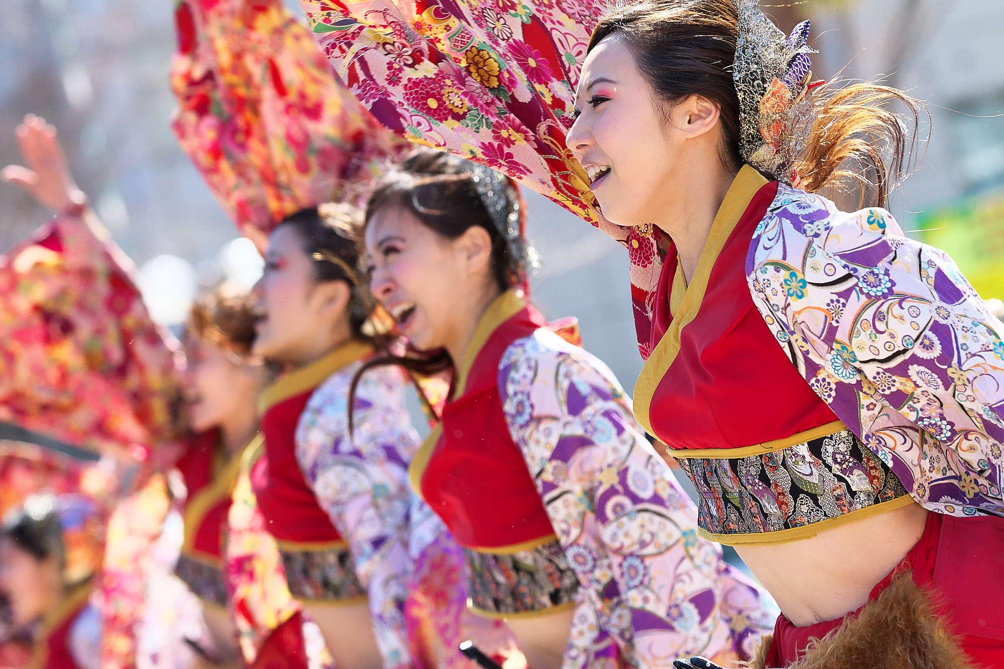 第14回 浜松がんこ祭(浜よさ)フォトコンテスト。_c0187584_202213.jpg