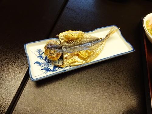 明日のご予約。。。 & 箱根9.。。_b0210688_21152055.jpg