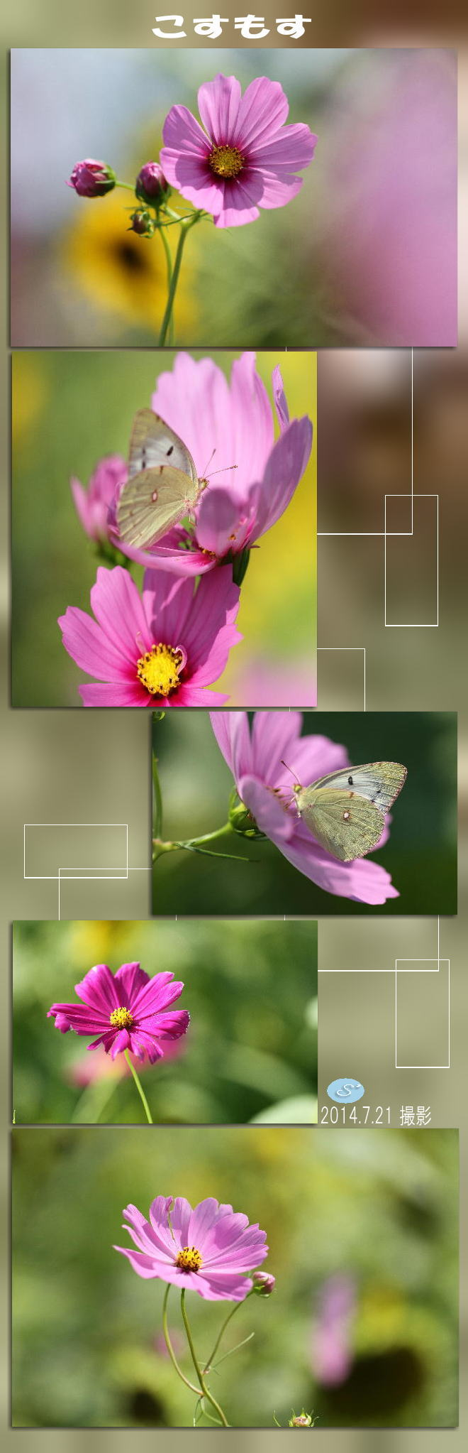 f0164592_13122178.jpg