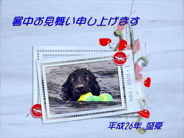 f0176499_03105806.jpg