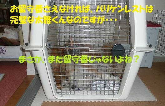 f0121712_15552423.jpg