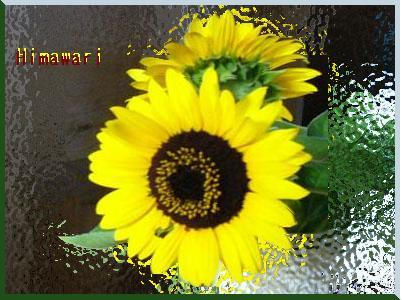 f0345156_19460930.jpg