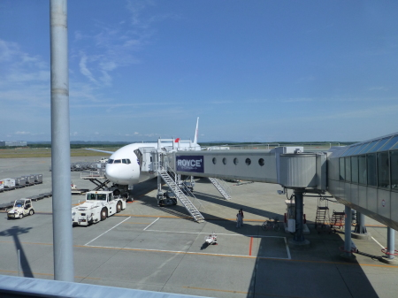 フライトシリーズ  新千歳空港上空での珍事_b0011584_05362365.jpg