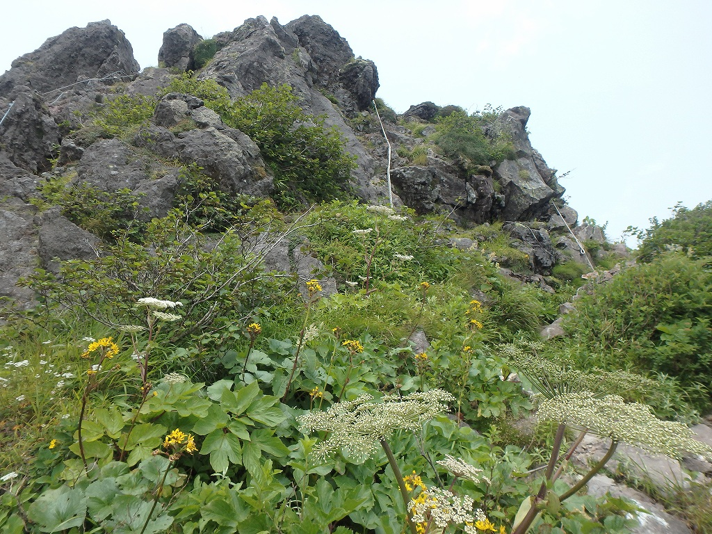 地震後の恵庭岳、再び 7月25日_f0138096_22104773.jpg